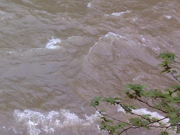 пълноводна река