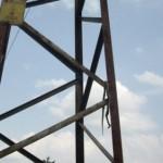 Нови трима  крадци на ток засечени при акция в  Радомирци