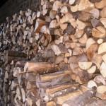 Мъж от Червен бряг се подготвил за зимата с 1.5 кубика крадени дърва за огрев