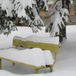 Ще има ли сняг за Коледа и Нова година