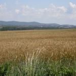 Изнесени приемни за земеделските производители в областта в периода март-май