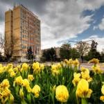 Стартира проект за оптимизиране на общинските политики в Червен бряг