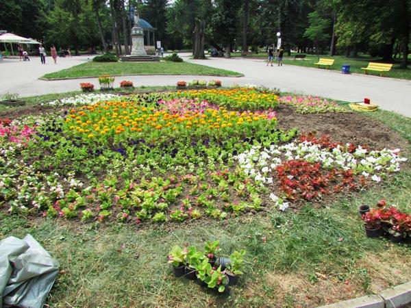 цветна алея в Градската градина