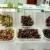нови сортове грозде на ИЛВ