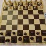 """Известни са победителите във второто издание на шахматната верига Купа """"Евроинс"""" в Плевен"""