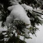 Около 25 см е снежната покривка в Плевен