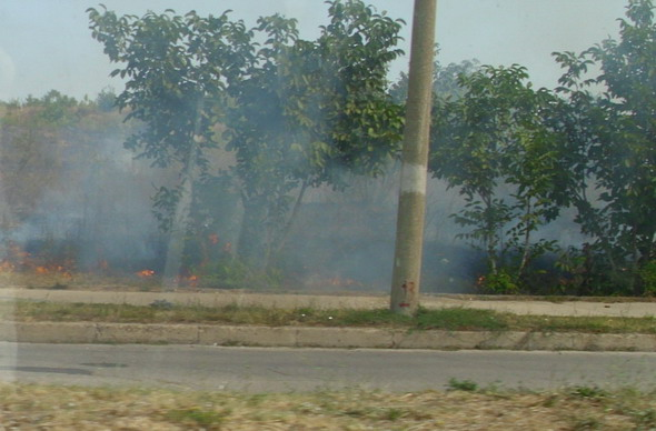 пожар край пътя 2