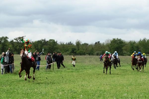 конен спорт Горни Дъбник (2)