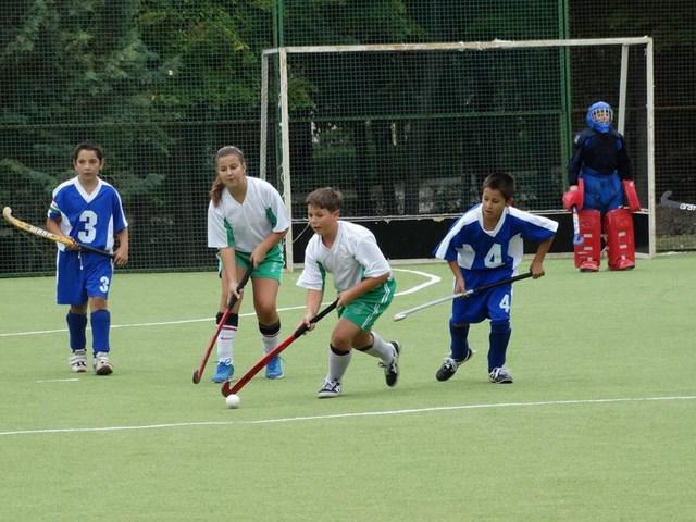 хокей на трева (2)