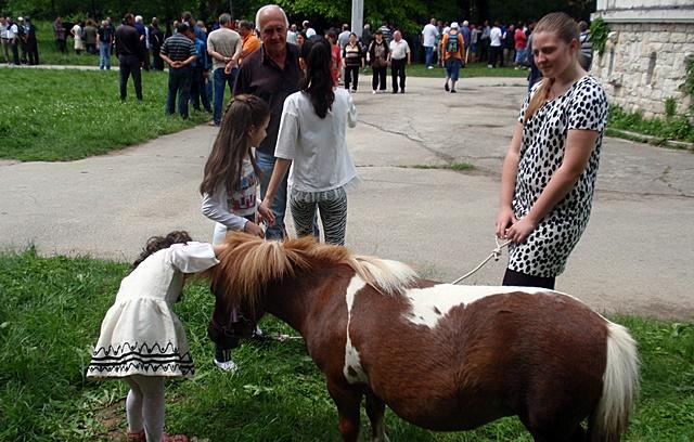 изложение коне