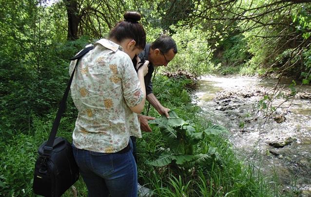 2проект ние обичаме биоразнообразието