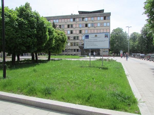 IMG_9566градинки трева