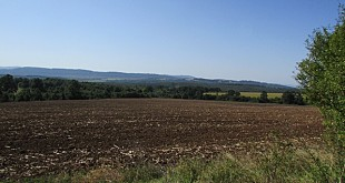 IMG_2885земеделие-нива