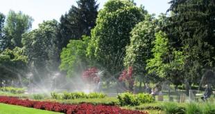 Плевен център цветя