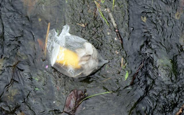 боклук речно корито бара 3
