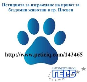 petizia 2