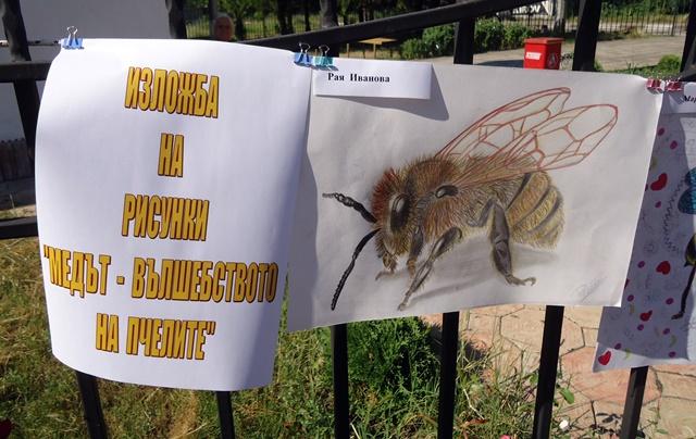 празник пчелари Победа 8
