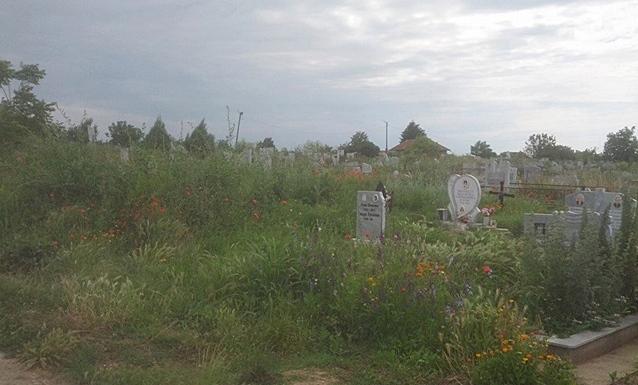 кнежа гробищен парк